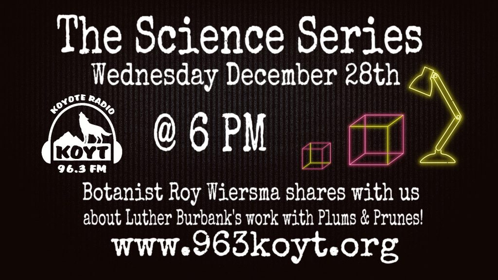 KOYT Science Series with Roy Wiersma talking about Luther Burbank's work with plums and prunes