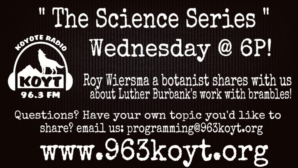 KOYT science series roy wiedsma luther burbank brambles